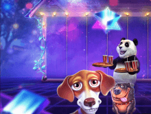 Royal Panda Summer Festival Continues with New Video Slots Promo